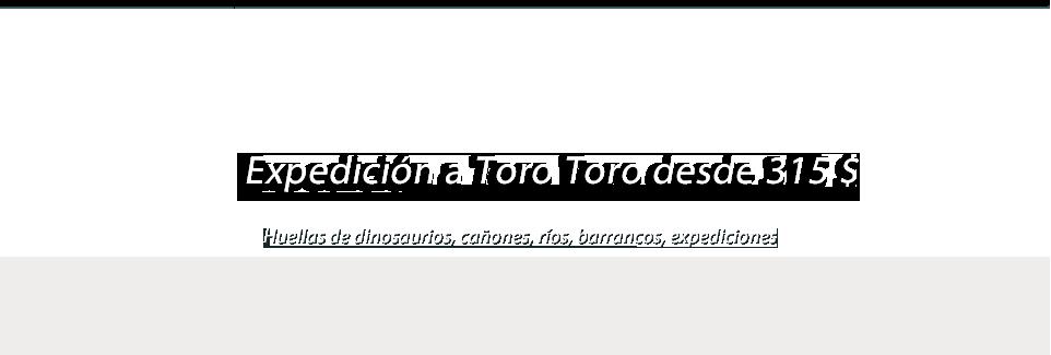 Expedición a Toro Toro desde 315$
